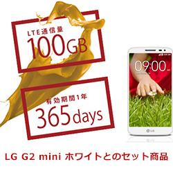 b-mobile 大容量高速データ通信サービス 100GB/365日スマートフォンセット BM-G2MW-100GB