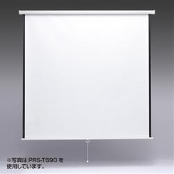 PRS-TS80