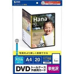 JP-DVD10N