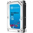 Seagate Surveillance HDD 3.5�C���`����HDD 4TB SATA 6.0Gb/s 5900rpm 64MB ST4000VX000