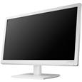 LCD-AD194EW