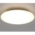 LEDシーリングライト 12畳向け リモコン付属 調光10段階 調色11段階 常夜灯2段階 おやすみタイマー CL12DL-5.0